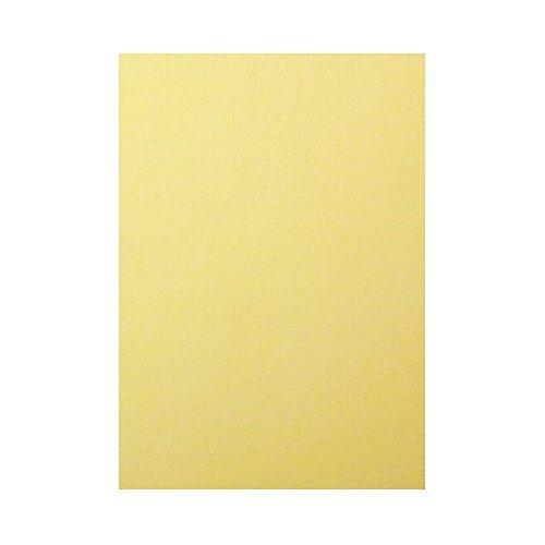 (まとめ買い)アルテ のり付きパネル のりダン B2 5枚パック ホワイト ND-B2 〔×3〕