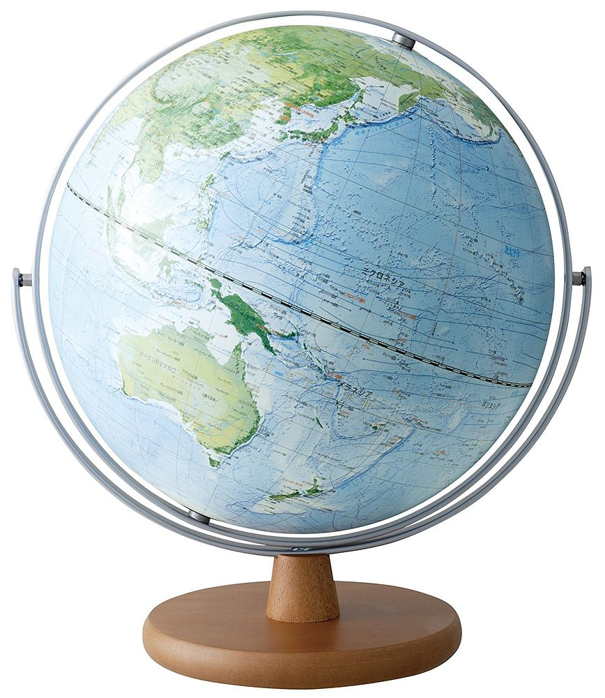【送料無料】(まとめ買い)レイメイ藤井 地球儀 地球地図プロジェクト 30cm OYV260 〔4個セット〕
