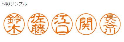 SHACHIHATA姓名商标黑色11已制成的1756藤谷XL-11 1756 fujitani