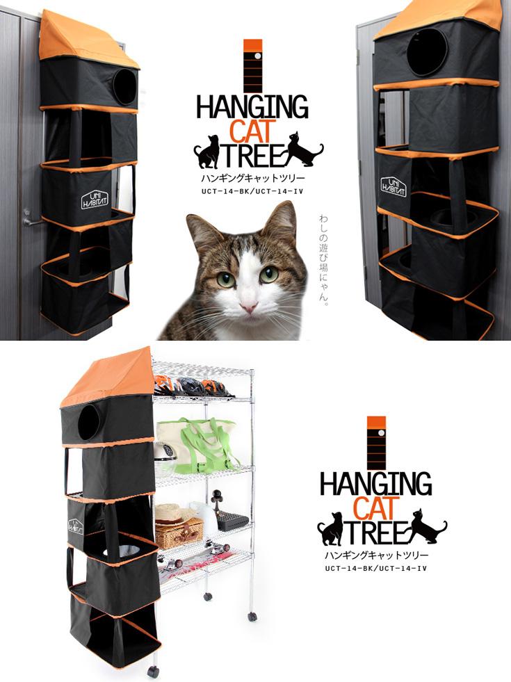 UNIHABITAT (联合国人居署) 挂着猫猫玩具竞选 UCT 14 棵