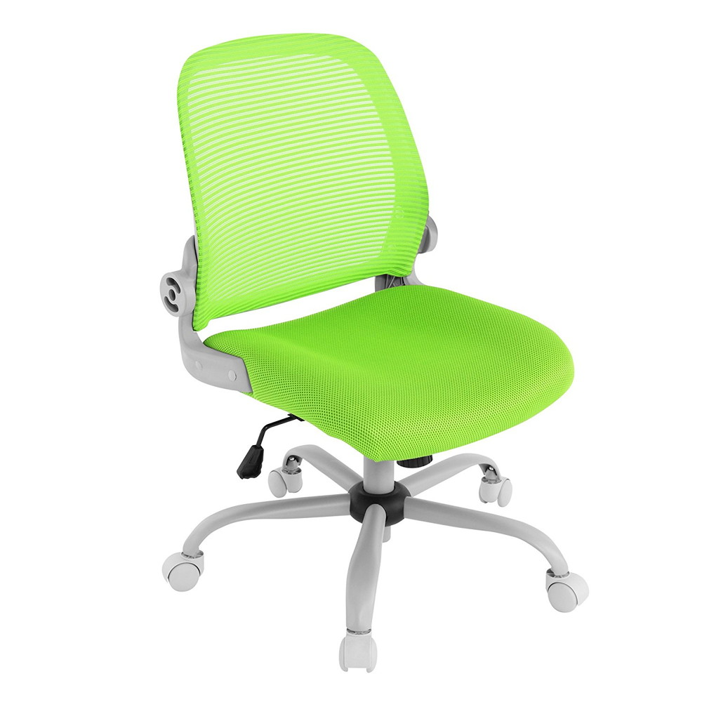 Bauhutte (バウヒュッテ) 事務椅子の決定版 デスクチェア The・ジム(ザジム) 日本人向け低座面設計 肘掛なしタイプ グリーン CP-23-GN【代引不可】