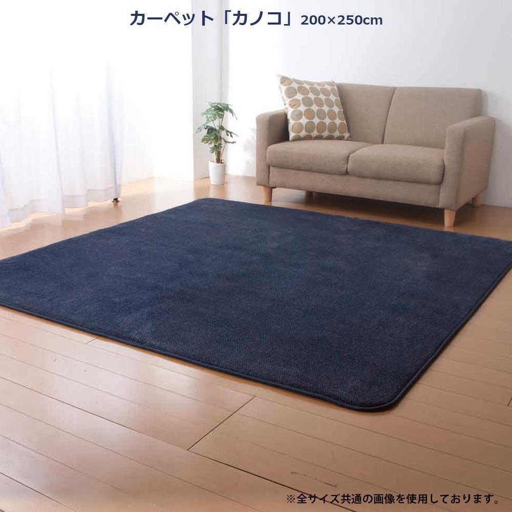 カーペット 「カノコ」 200×250cm ブルー FIN-745LBU 【代引不可】