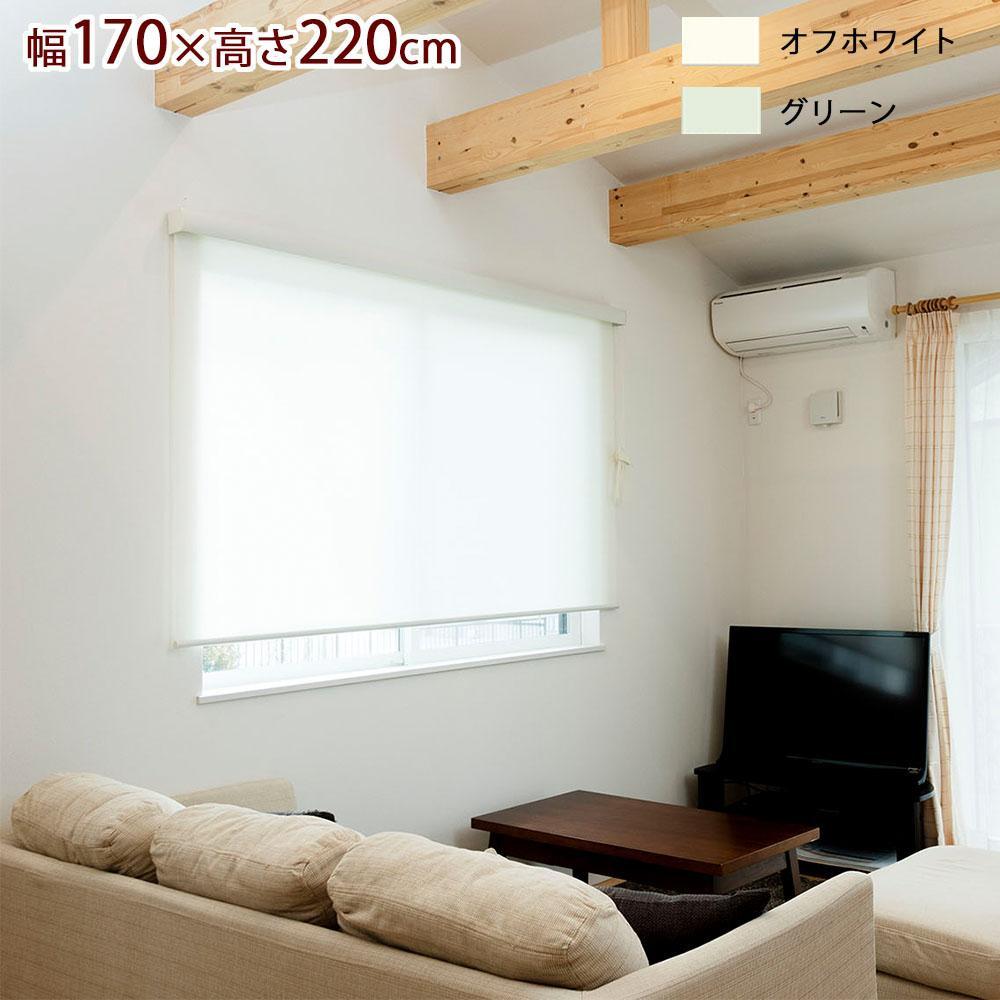 ロールスクリーン エクシヴ プレーンタイプ 幅170×高さ220cm グリーン・L3520 【代引不可】