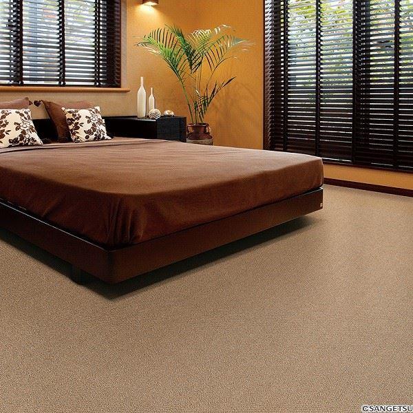 サンゲツカーペット サンナチュラル 色番NA-2 サイズ 200cm×300cm 〔防ダニ〕 〔日本製〕【代引不可】