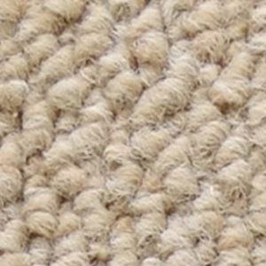 【送料無料】サンゲツカーペット サンノート 色番EO-1 サイズ 220cm 円形 〔防ダニ〕 〔日本製〕【代引不可】