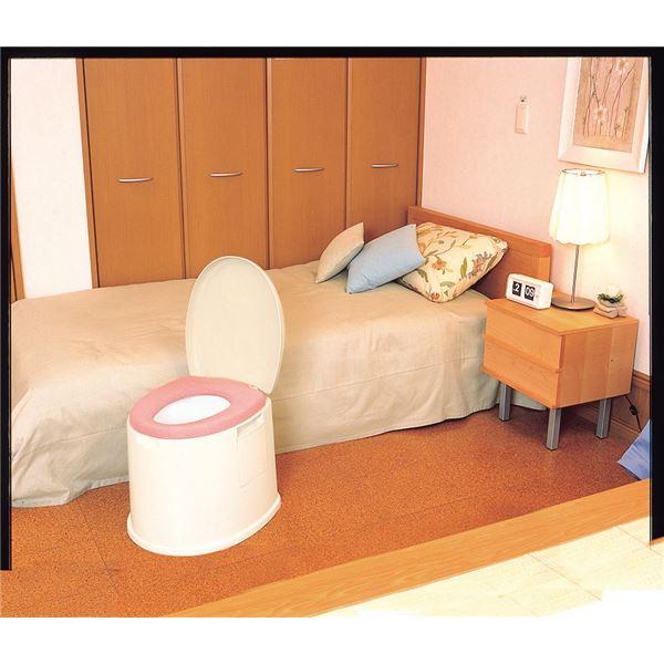 【送料無料】パナソニックエイジフリーライフテック 樹脂製ポータブルトイレ ポータブルトイレポケット付DX VALPTHBEDX【代引不可】