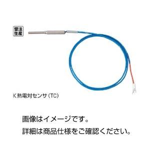 【送料無料】(まとめ)K熱電対センサー(シース型)TC3.2×200-K〔×10セット〕【代引不可】