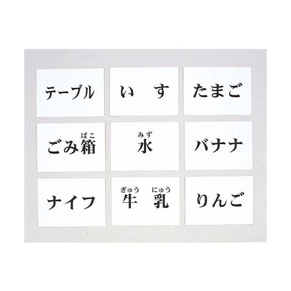 【送料無料】DLM 言語訓練文字カード 食物・家具 1245S-M【代引不可】