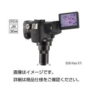 【送料無料】キヤノン 一眼レフD画像システム EOSX7i【代引不可】