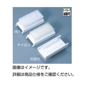 (まとめ)手洗いブラシ 爪洗付〔×10セット〕【代引不可】【北海道・沖縄・離島配送不可】