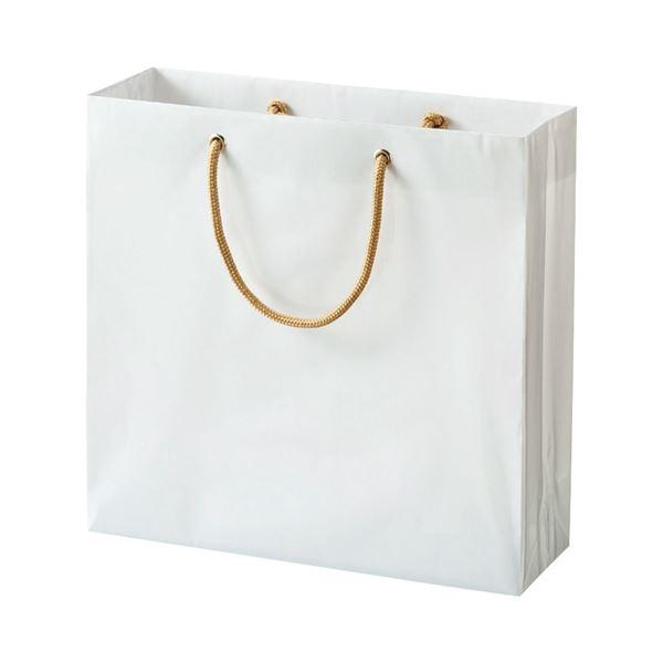 (まとめ) TANOSEE ビニールカバー付手提げ袋 S ヨコ330×タテ320×マチ幅110mm 白無地 1パック(10枚) 〔×5セット〕【代引不可】【北海道・沖縄・離島配送不可】