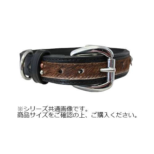 Angel Sedona Collar 犬用首輪 Black 11092 【代引不可】【北海道・沖縄・離島配送不可】