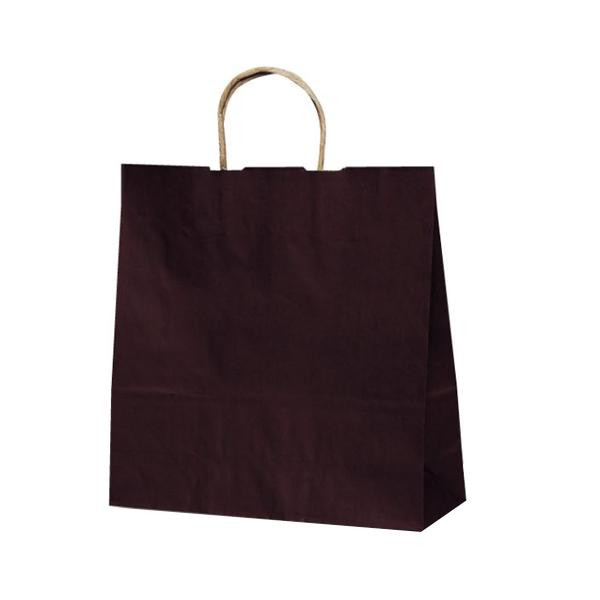 T-6 自動紐手提袋 紙袋 紙丸紐タイプ 320×110×330mm 200枚 カラー(カカオ) 1646 【代引不可】【北海道・沖縄・離島配送不可】