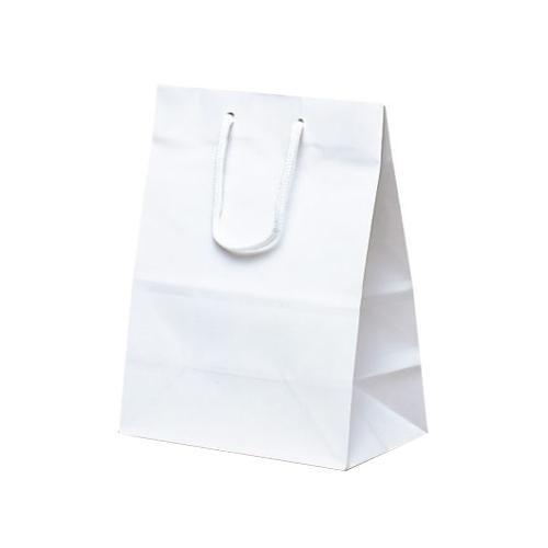 ミニバッグ 手提袋 190×110×250mm 100枚 ホワイト 1520 【代引不可】【北海道・沖縄・離島配送不可】