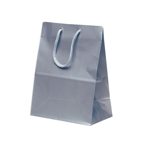ミニバッグ 手提袋 190×110×250mm 100枚 シルバー 1512 【代引不可】【北海道・沖縄・離島配送不可】
