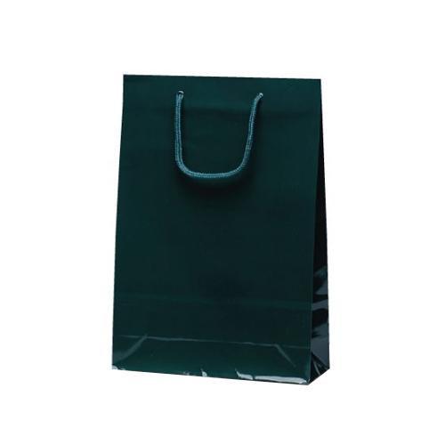 ナイスバッグ 手提袋 225×80×320mm 50枚 ダークグリーン 1162 【代引不可】【北海道・沖縄・離島配送不可】