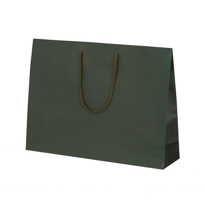 T-Y カラークラフト 紙袋 430×110×320mm 100枚 グリーン 1042 【代引不可】【北海道・沖縄・離島配送不可】