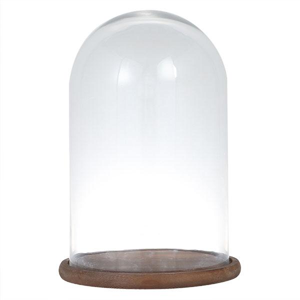 ダルトン グラスドーム GLASS DOME M SG1957WS【代引不可】