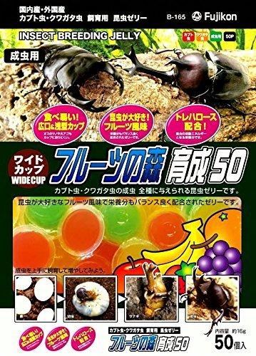 (まとめ買い)フジコン ワイドカップ フルーツの森 育成50 〔×10〕【代引不可】