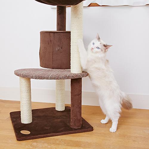 アドメイト 猫のおあそびポールチェック ハイタイプ 【代引不可】