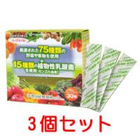 ヨーグルト味 植物性乳酸菌 乳酸菌植物発酵の力(顆粒)3個セット