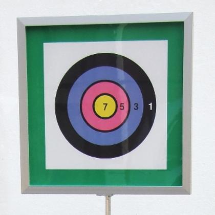 レクリエーション 吹き矢|吸盤式スタンド用競技的(的のみ)