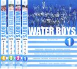 全巻セット【送料無料】【中古】DVD▼ウォーターボーイズ WATER BOYS(4枚セット)▽レンタル落ち