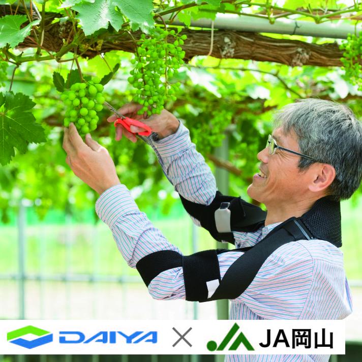 ダイヤ工業とJA岡山の共同開発 果樹農家向けサポーター 長時間の腕上げ姿勢をサポート bonbone 35%OFF MOTT フリーサイズ モット 贈呈