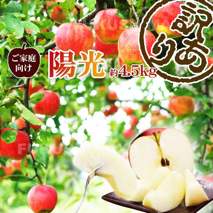 贈物 味は贈答向けなのにちょっと訳あり 甘味と酸味のとれたリンゴ 陽光 訳あり 約4.5kg箱 発送:10月中旬頃~11月上旬頃まで予定 10玉~25玉 店内全品対象 りんご