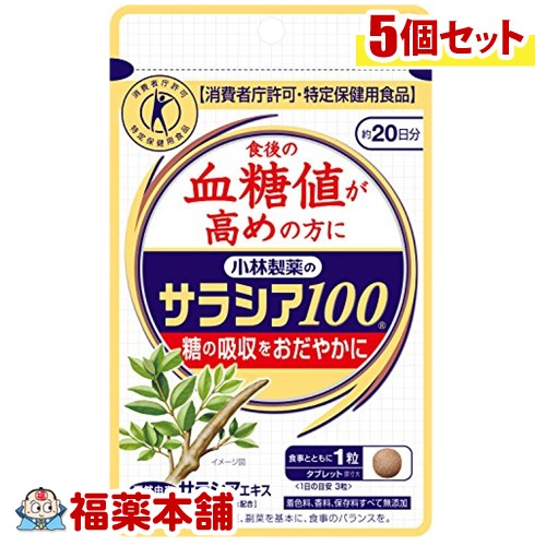 小林 サラシア100 60錠×5個 [小林製薬の栄養補助食品] [ゆうパケット・送料無料] 「YP10」