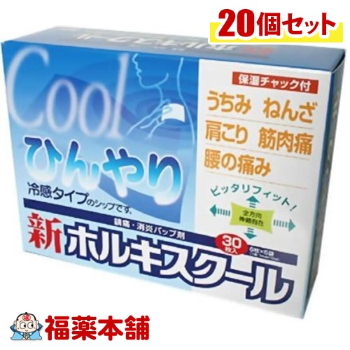 【第3類医薬品】新ホルキスクール 30枚×20箱[宅配便・送料無料] 「T140」