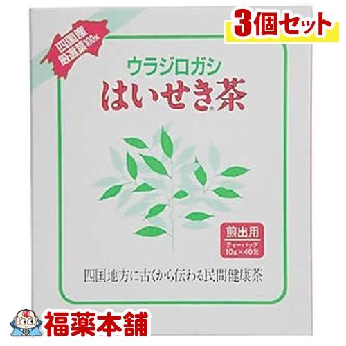 はいせき茶煎出用(40入)×3個 [宅配便・送料無料] 「T80」