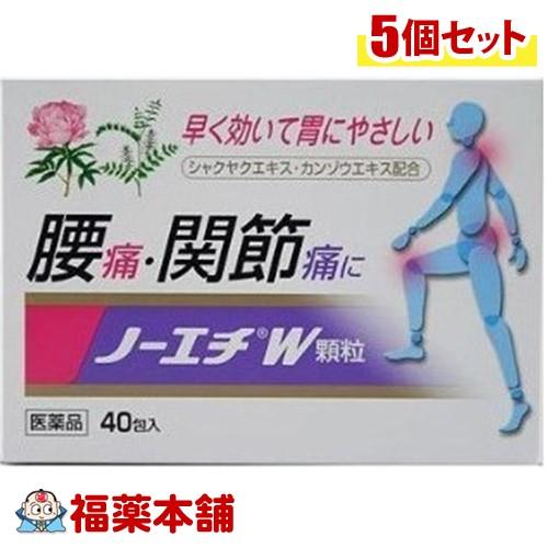 【第(2)類医薬品】ノーエチW顆粒 40包×5箱[宅配便・送料無料] 「T80」