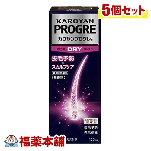 【第3類医薬品】カロヤンプログレ ドライ(120mL)×5個 [宅配便・送料無料] 「T60」