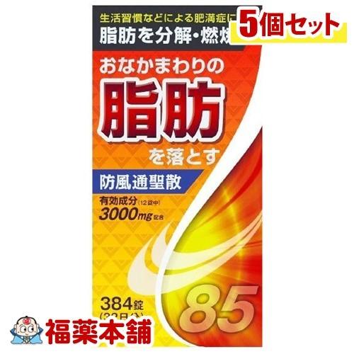 【第2類医薬品】防風通聖散料エキス錠(384錠)×5個 [宅配便・送料無料] 「T60」