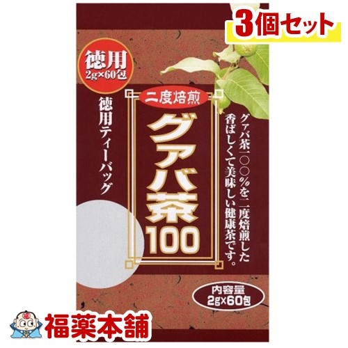 本品は 宅配発送で送料無料 北海道 沖縄 離島への発送不可 ×3個 送料無料 2020 新作 グァバ茶100 宅配便 新作多数 2GX60包入