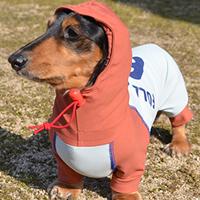 NEW!! F.Water-repellent stretch raincoat