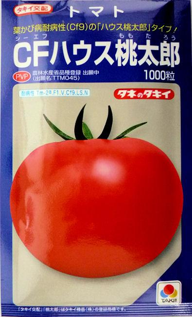 【タキイ種苗】CFハウス桃太郎トマト 1000粒