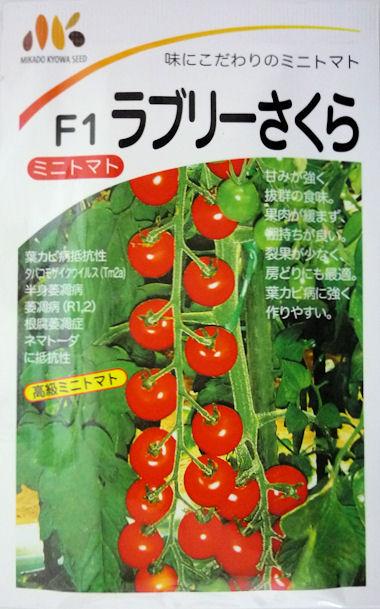 【みかど協和】ラブリーさくらミニトマト 1000粒
