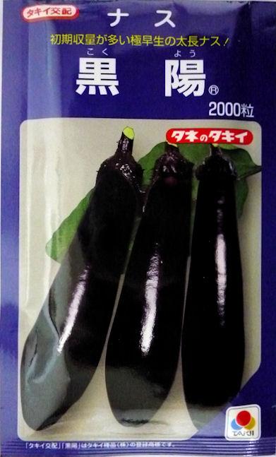 【タキイ種苗】黒陽ナス 2000粒