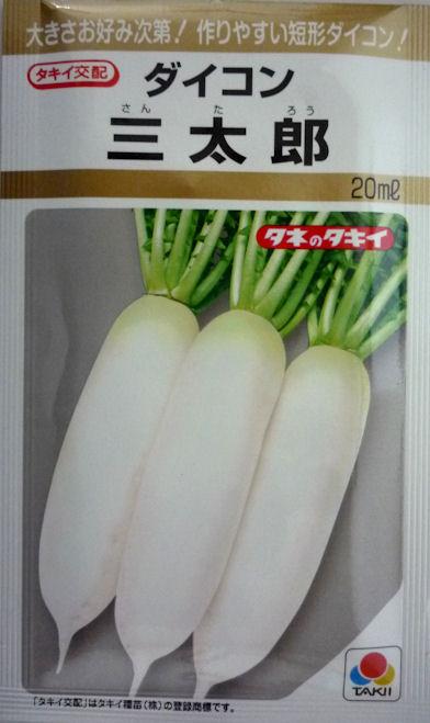 ダイコンのタネ 大きさお好み次第 超激安 作りやすい短形だいこん 三太郎大根 20ml ◆高品質 タキイ種苗