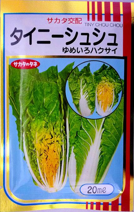 ハクサイのタネ サラダでどうぞ 誕生日/お祝い つくり方 食べ方いろいろ タイニーシュシュ白菜 サカタのタネ 高い素材 20ml