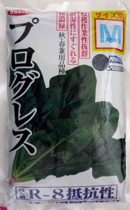 ホウレンソウのタネ べと病R-1~8抵抗性 極濃緑で立性 耐湿性にすぐれる品種 30000粒 プログレスほうれん草 絶品 M 贈呈 サカタのタネ