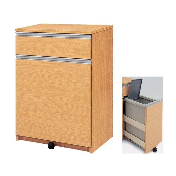 ダストボックス ごみ箱収納 2分別「アルビナ」 キッチン 台所 収納45リットル フタ付送料無料