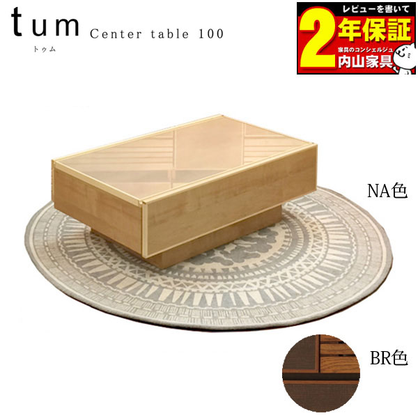 センターテーブル リビングテーブル リビング収納 100cm幅「トゥム」フルオープンレール 送料無料