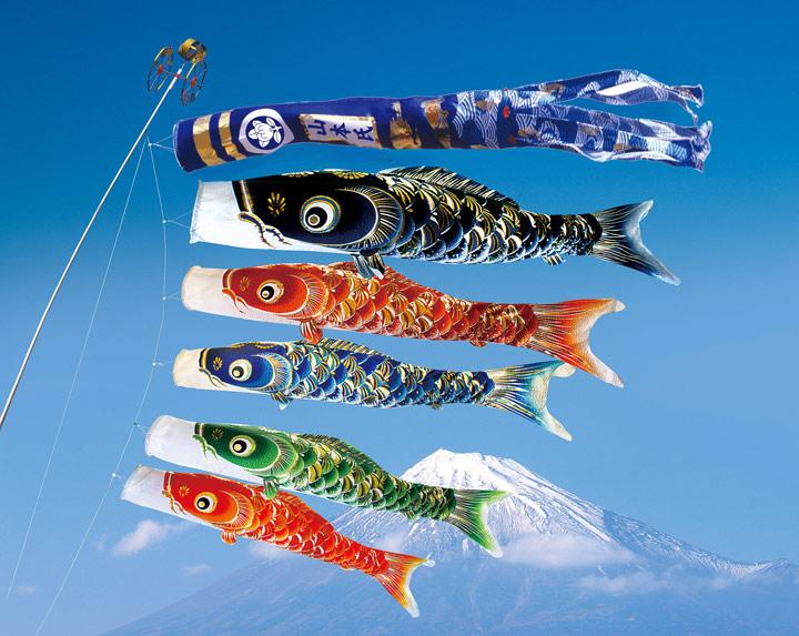 5m宝碧鯉のぼり 昇龍吹流8点セット【鯉幟】【鯉のぼり】