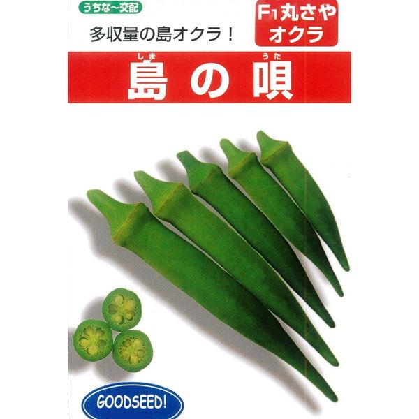 収量が多いF1丸莢オクラ ●日本正規品● 発売モデル オクラ 丸オクラ 島の唄 種 1DL