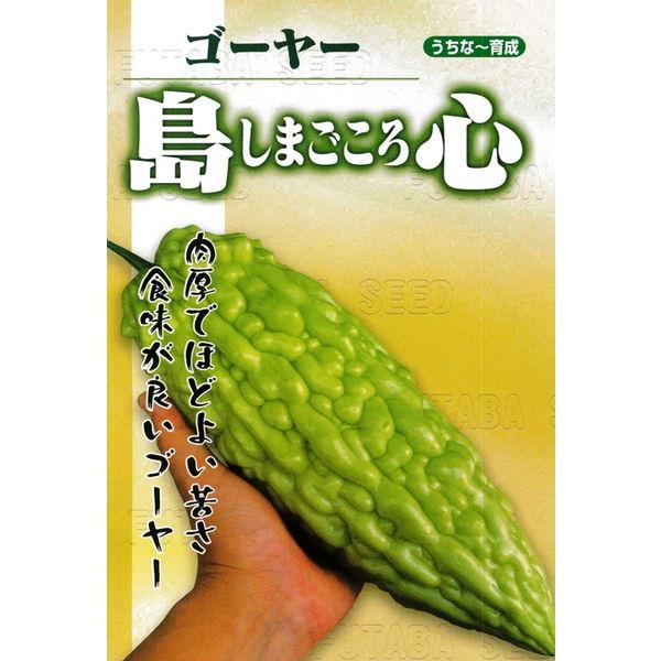 苦瓜(ゴーヤー) 種 【島心ゴーヤー 1リットル】※10%増量の低発芽率種子となります。※2袋以上御購入で宅配便(送料¥1000)