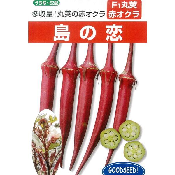 オクラ(丸オクラ) 種 【島の恋 1リットル】※2袋以上御購入で宅配便(送料¥1000)