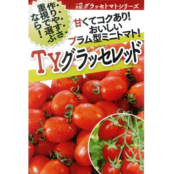 トマト(ミニトマト) 種 【TYグラッセレッド 1000粒】